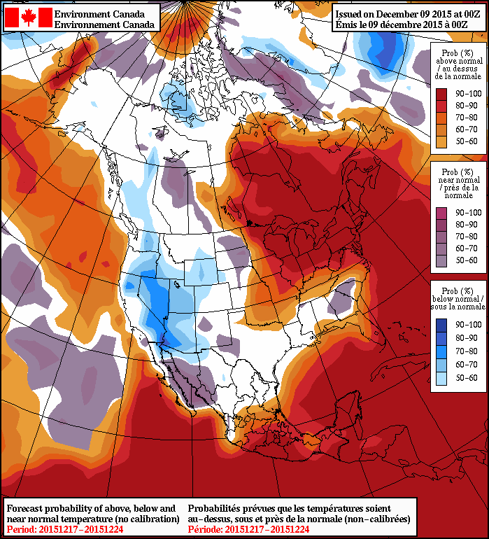 NAEFS 8-14 Day Temperature Anomaly Forecast
