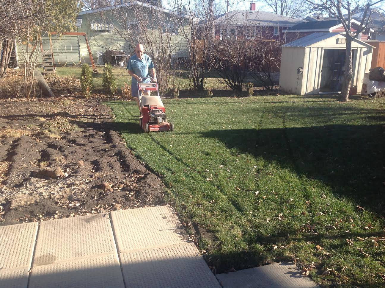 Morden, MB – Cutting grass in December.