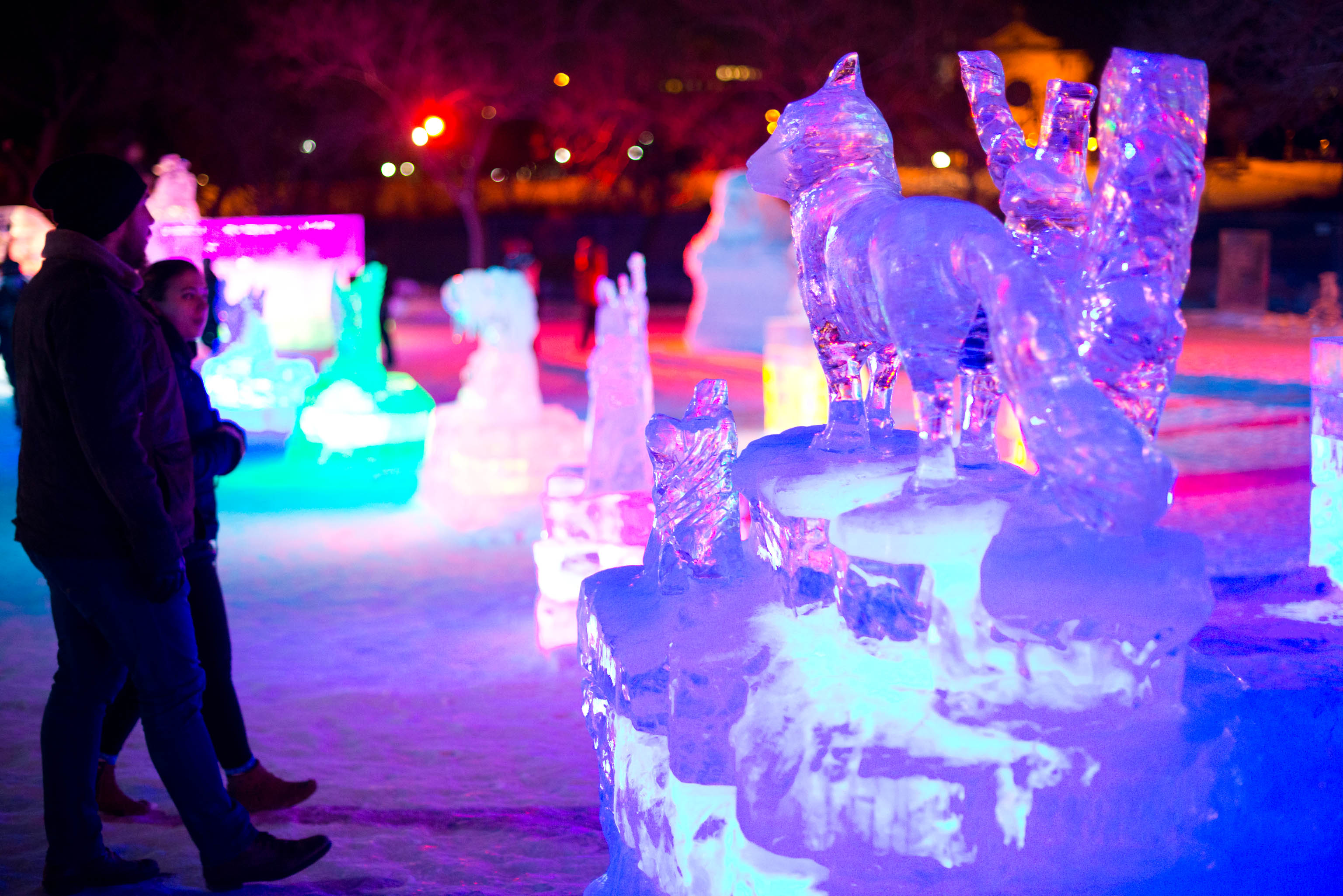 Winnipeg's Winter Ice Festival 2016